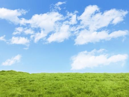 緑と青い空