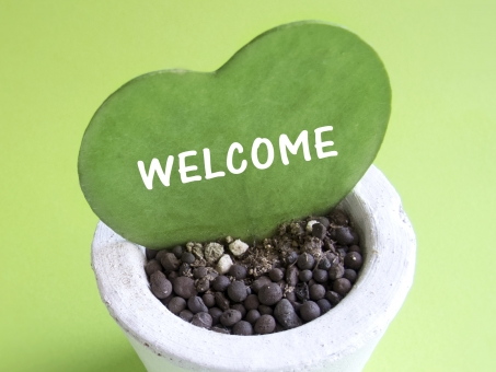 welcome サボテン